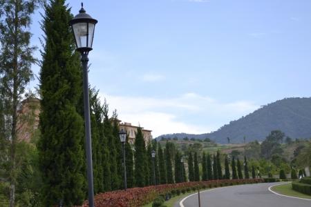 Road in the resort