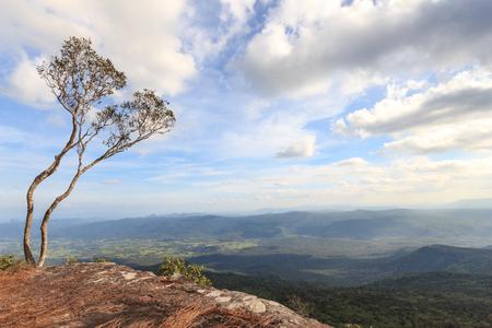 kradueng: Cliff at Phu Kradueng, Loei : Thailand