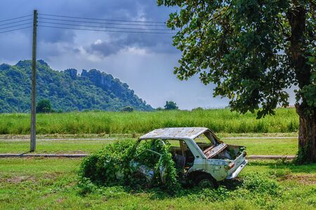 Rusty car wreck, Derelict old car is overgrown with grass, An old rusted out scrap car that has been abandoned mountains under the Tree