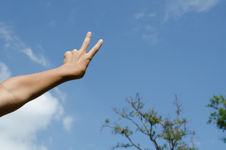 winning bid: Hand with two fingers up in the peace or victory symbol