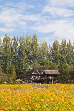 ジム ・ トムソンの農場、タイでタイの古代家。 写真素材