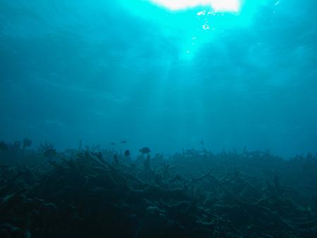 underwater background: blue ocean