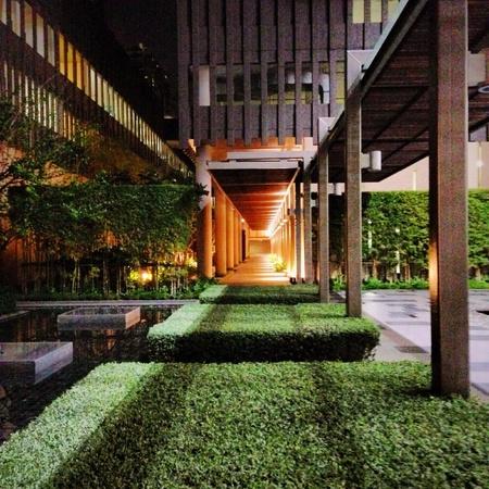 landscape garden: Landscape garden