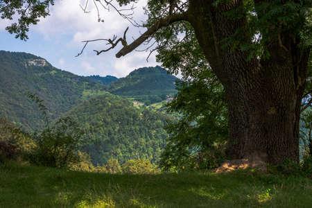 Can Freixeneda - la Vall den Bas