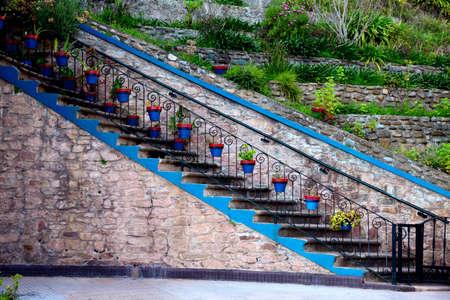garden, gardening, geranium, green flowerpots in stair colors garden Foto de archivo