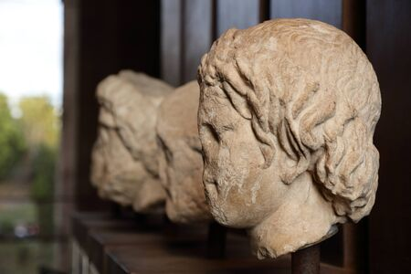 busts: Roman busts