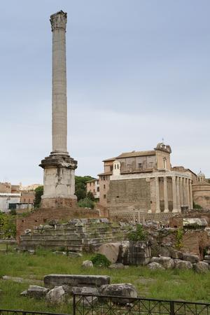 spqr: Roma - Foro Romano