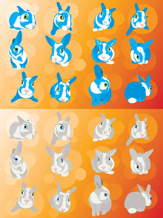 meraklı: Komik meraklı tavuk kalpli tavşan