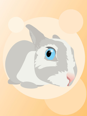 Funny curious chicken-hearted rabbit