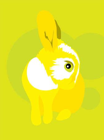 meraklı: Komik meraklı tavuk yürekli tavşan