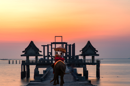 Tourist on elephant sightseeing in Phuket, Thailand Stock Photo