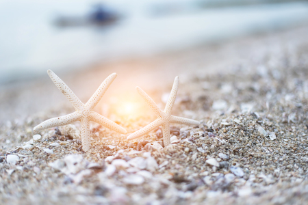 Starfish at the sandy summer beach with blue sea in the background with small waves. Travel, holiday and vacation in the summer tranquility getaway and relaxation concept.
