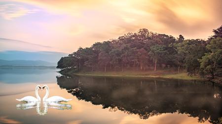 Mountain lake early in the morning. Water vapor