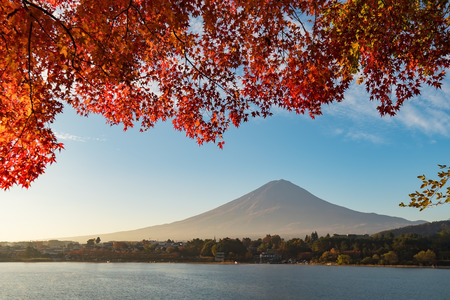 The breathtaking view of Mt. Fuji in autumn at Kawaguchiko lake, Japan. Fuji mountain is one of the well known symbol of Japan.