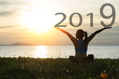 Happy new year 2019. Silhouette of girl on grass with beautiful sunset sky background.