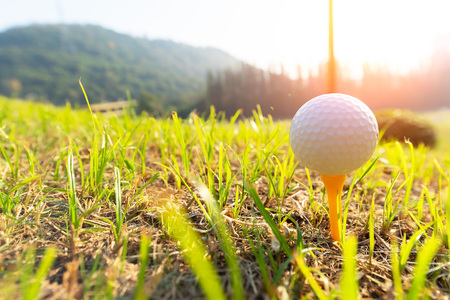 Golf ball on the green grass near to pitch.Sport Concept