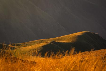 lake-green field -golden grass on the hill