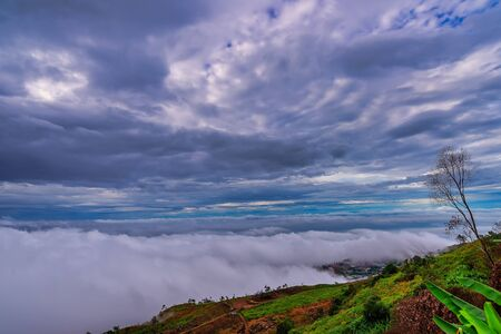 The fog at Phu Thap Berk Mountain in Phetchabun, Thailand