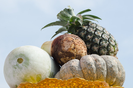 A group fruits have pineapple taro pumpkin winter melon in white  photo