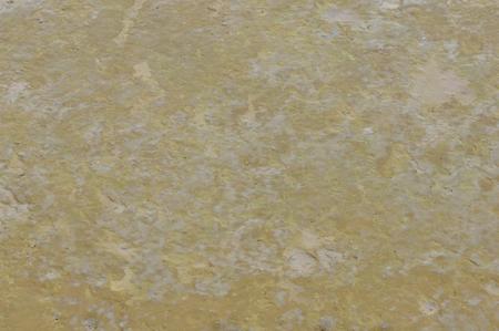 wetlands: wetlands mud  Stock Photo