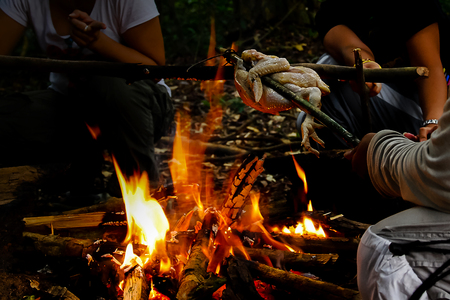 Chicken Roasting on Make Shift Stick Rotisserie Over Open Camp Fire in Wilderness Setting and tree people wating for dinner in the wild Reklamní fotografie