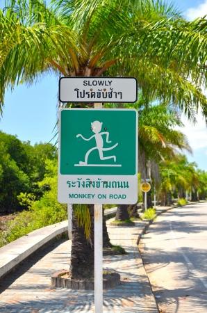 be careful: Be careful monkey on road ,drive car slowly