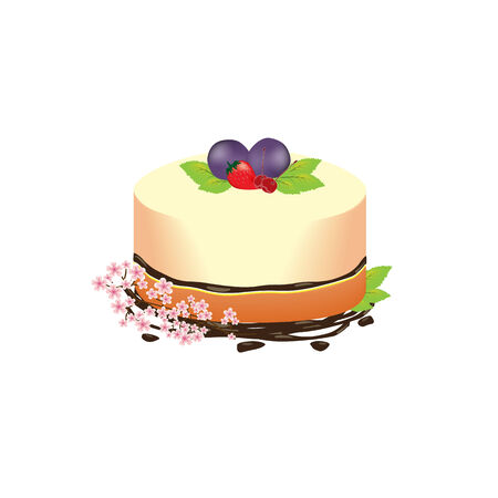 blueberry cheesecake: blueberry cheesecake with Big blueberry ,strawberry,cherry and chocolate decorate with cherry blossom leaf.