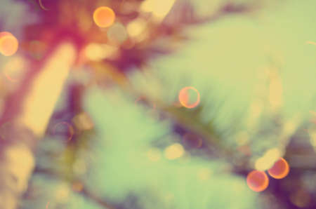 Blur tropical palm tree double exposure with colorful bokeh light abstract background.Retro color style. Stock Photo