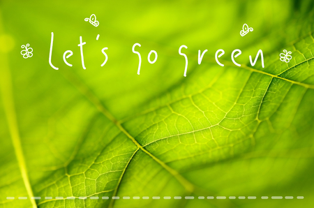 let s: Let s go green words hand writing on nature green leaf texture background.Shallow depth of field. Stock Photo
