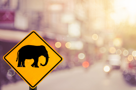 Elephant warning sign on blur traffic road with colorful bokeh light abstract background. Transportation and travel concept. Retro tone color style.