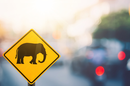 Elephant warning sign on blur traffic road with colorful bokeh light abstract background. Copy space of transportation and travel concept. Retro tone filter color style.
