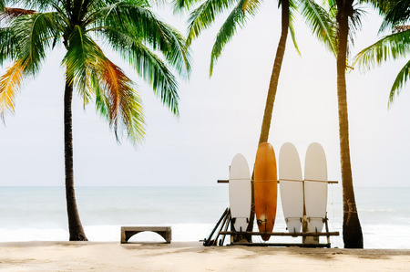 Surfboard and palm tree on beach background. Vintage tone filter color style. Banco de Imagens - 85069150