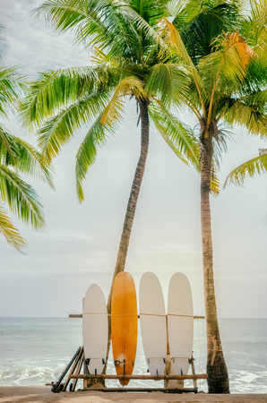 Surfboard and palm tree on beach background. Vintage tone filter color style.