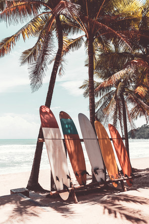 Tabla de surf y palmera en el fondo de la playa. Viajes deporte de aventura y concepto de vacaciones de verano. Estilo de color de efecto de filtro de tono vintage.