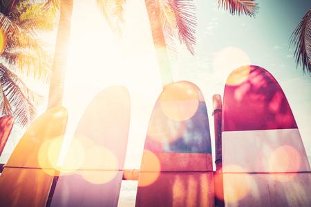 Tavola da surf e palma sulla doppia esposizione della spiaggia con fondo astratto di struttura della luce del sole variopinto del bokeh. Vacanze estive e concetto estremo di sport. Stile di colore del filtro tono vintage.