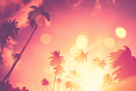 Summer vacation and nature travel adventure concept. Tropical palm tree with colorful bokeh sun light on sunset sky cloud abstract background. Vintage tone filter effect color style. 写真素材