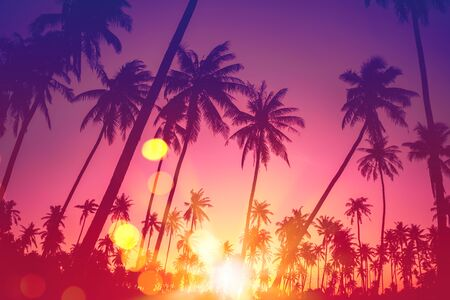 Summer vacation and nature travel adventure concept. Tropical palm tree with colorful bokeh sun light on sunset sky cloud abstract background. Vintage tone filter effect color style. Banco de Imagens