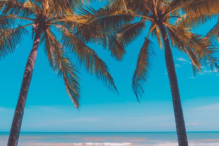 Summer vacation and holiday travel concept. Copy space of tropical beach with palm tree on blue sky and white clouds abstract background. Vintage tone filter effect color style. Stock Photo