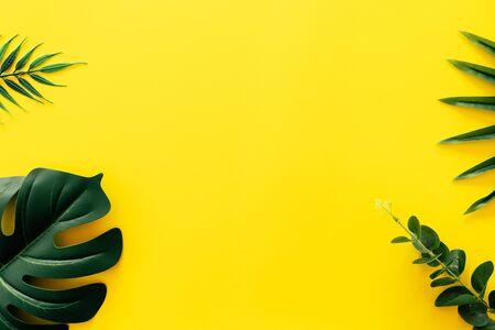 Feuille verte tropicale sur fond abstrait texture mur jaune. Espace de copie pour la présentation du produit de conception et le concept de vacances d'été. Banque d'images