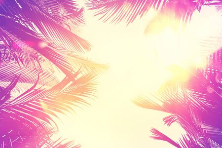 Copy space of silhouette tropical palm tree with sun light on sunset sky and cloud abstract background. Summer vacation and nature travel adventure concept. Pastel tone filter effect color style. Standard-Bild