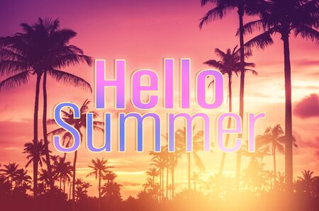 Hello summer words on tropical palm tree background. Summer vacation and travel holiday concept. Vintage tone filter effect color style.