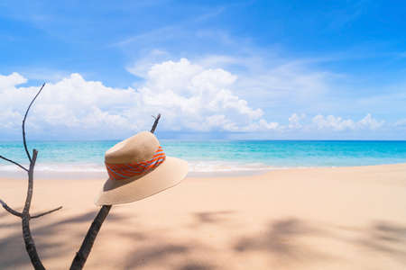 Hat on tree branch at tropical beach with blue sky and white cloud background. Travel vacation and summer holiday concept.