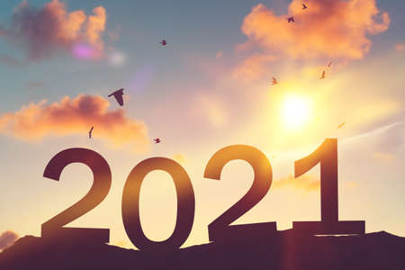 Number 2021 and birds flying on sunset sky at top of mountain abstract background. Happy new year and holiday celebration concept. Vintage tone filter color style.