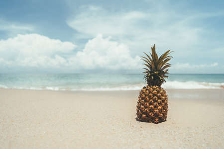 Pineapple isolated on a tropical beach Banco de Imagens