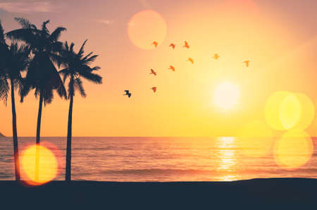 Silhouette palm tree at tropical beach with birds flying on sunset sky abstract background. Nature environment and travel freedom concept. Vintage tone filter effect color style. Banco de Imagens
