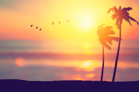 Silhouette palm tree at tropical beach with birds flying on sunset sky abstract background. Nature environment and travel freedom concept. Vintage tone filter effect color style. Stock Photo