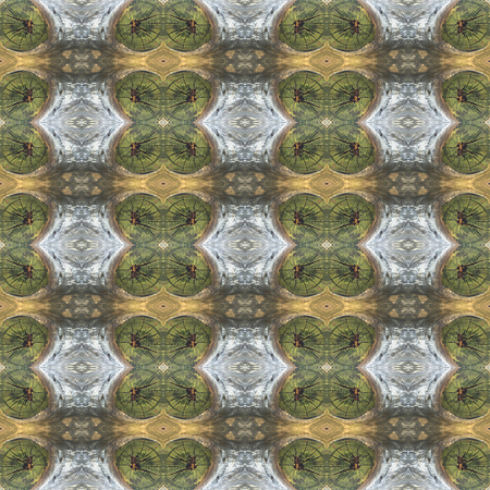 timberland: Natural wood seamless texture of a cut down tree. For eg fabric, wallpaper, wall decorations.