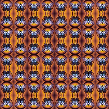 butterflies for decorations: Fantasy seamless pattern with butterflies. For eg fabric, wallpaper, wall decorations.
