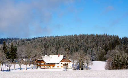 Typical german house in snowy landscape in black forest