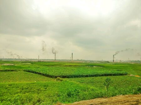 industry: green farmland